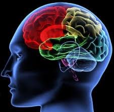 Consultório de Neuropsicológica em Sp no Jabaquara - Atendimento Psicológico