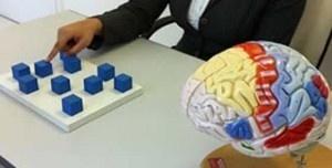 Onde Encontrar Consultório de Neuropsicológica no Parque São Lucas - Consulta Psicológica