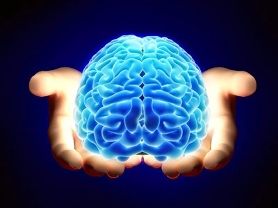 Onde Encontro Clínica de Neuropsicológica no Pari - Centro de Psicologia