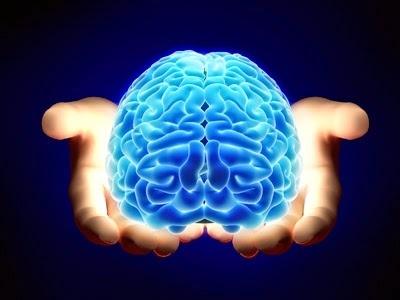 Onde Encontro Clínica de Neuropsicológica na Vila Formosa - Clínica de Avaliação Psicológica